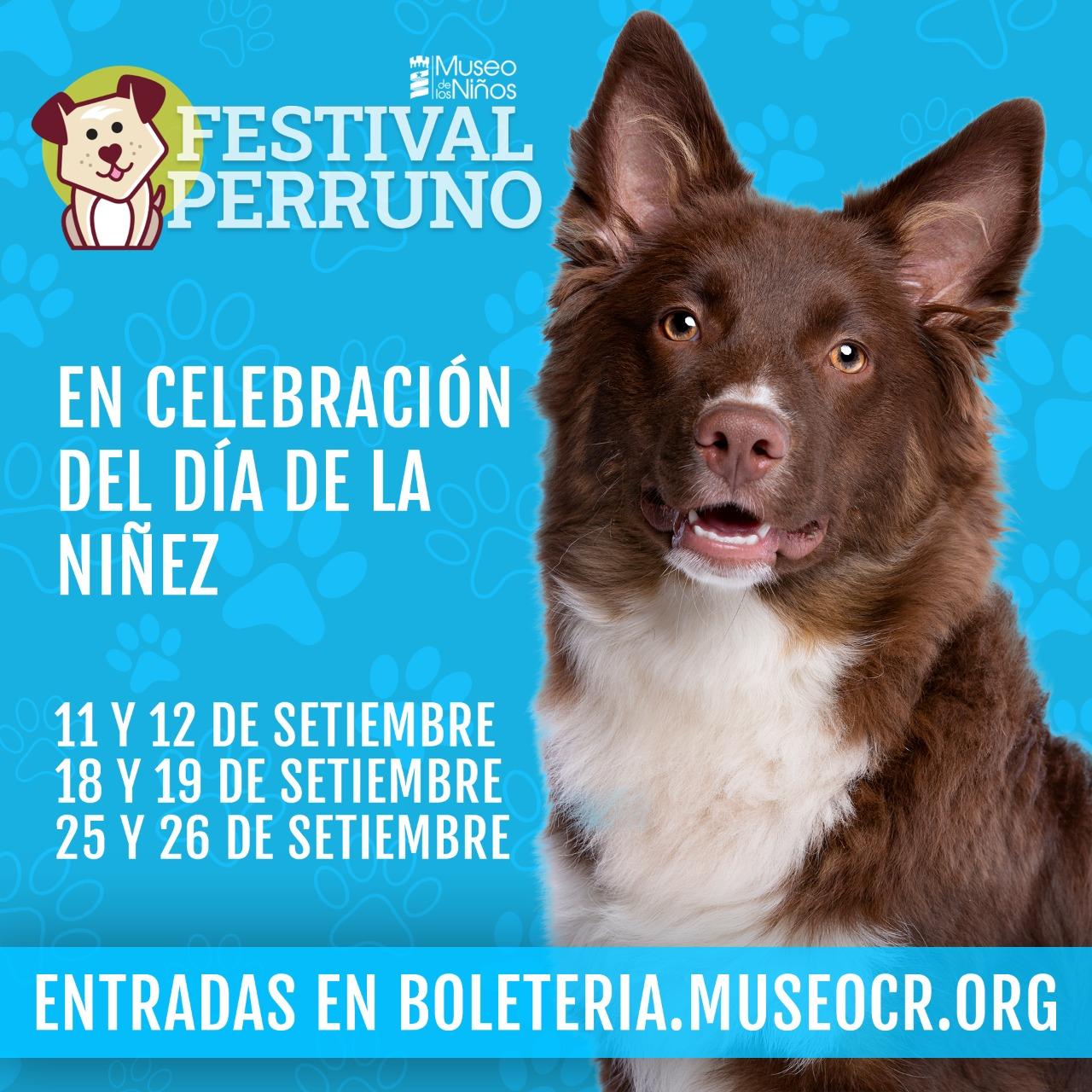 Imagen de Festival Perruno